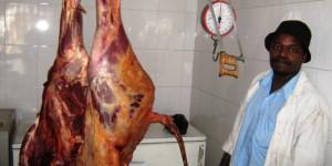 Stukje vlees van Justus?
